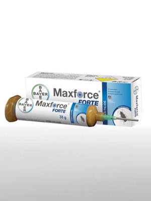 Maxforce Forte, Chemical Pesticide in Ahmedabad